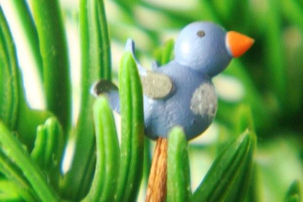 オリジナル小鳥・青