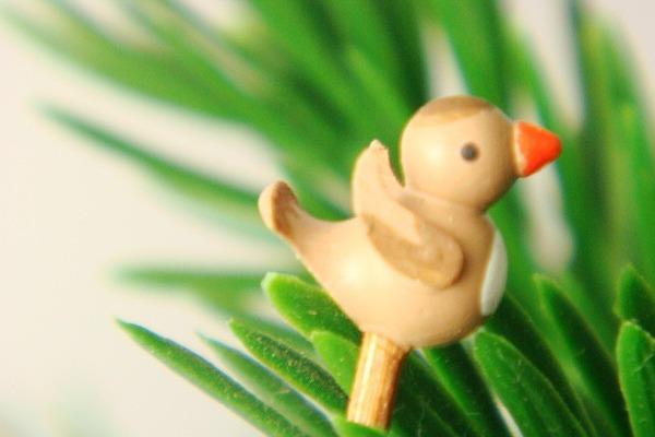 オリジナル小鳥・茶