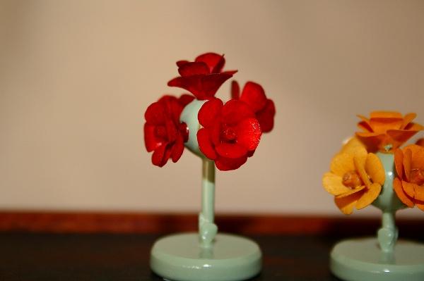 赤バラの木