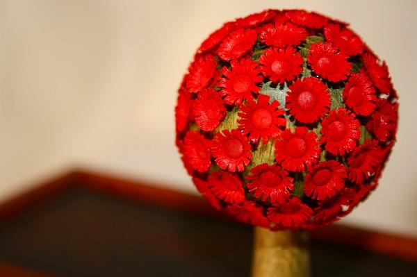 花の木 赤 中